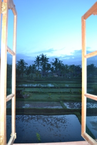The view from our Ubud room at Sawah Sunrise B&B