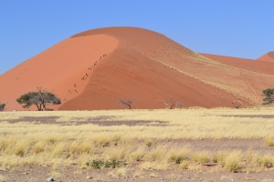 Dune 45 - yes, those are people climbing!