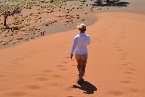 Walking Dune 45