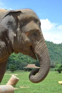 2012_Thailand 089